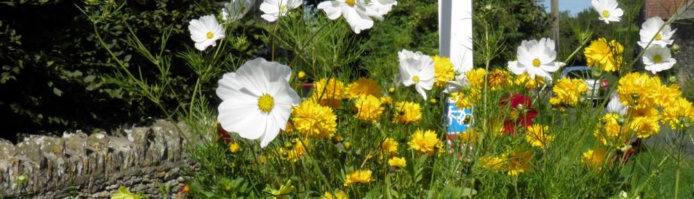 JCB-S Garden, Grounds and Landscape
